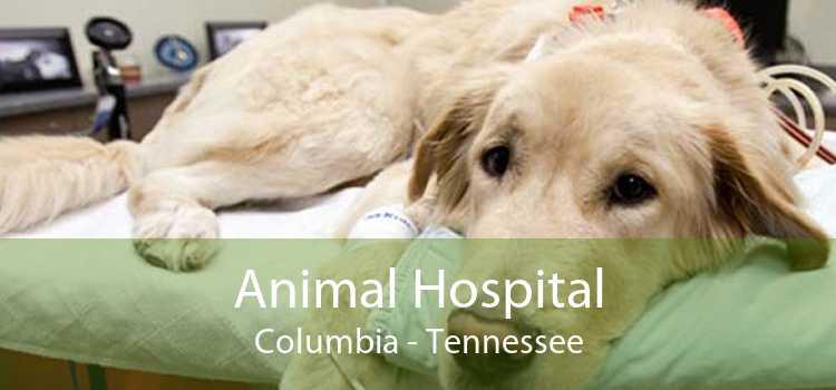 Animal Hospital Columbia - Tennessee