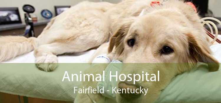 Animal Hospital Fairfield - Kentucky