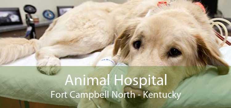 Animal Hospital Fort Campbell North - Kentucky