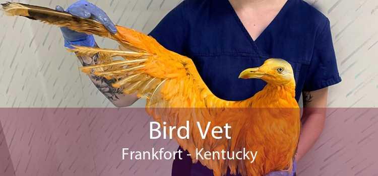 Bird Vet Frankfort - Kentucky