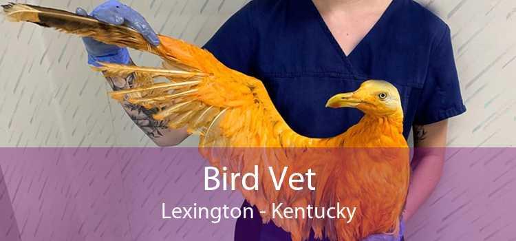 Bird Vet Lexington - Kentucky