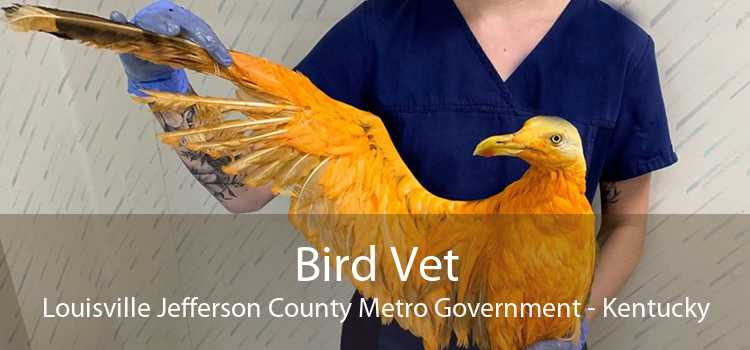 Bird Vet Louisville Jefferson County Metro Government - Kentucky