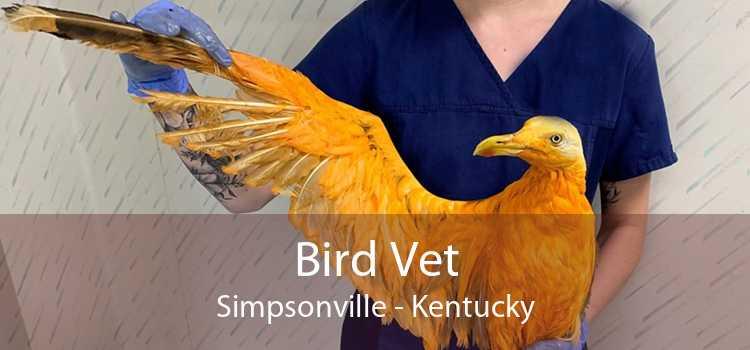 Bird Vet Simpsonville - Kentucky
