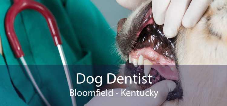 Dog Dentist Bloomfield - Kentucky