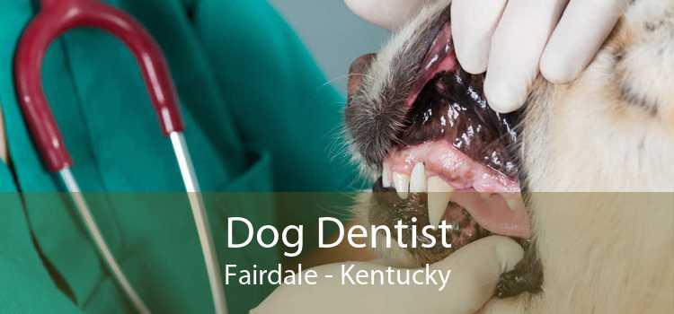 Dog Dentist Fairdale - Kentucky