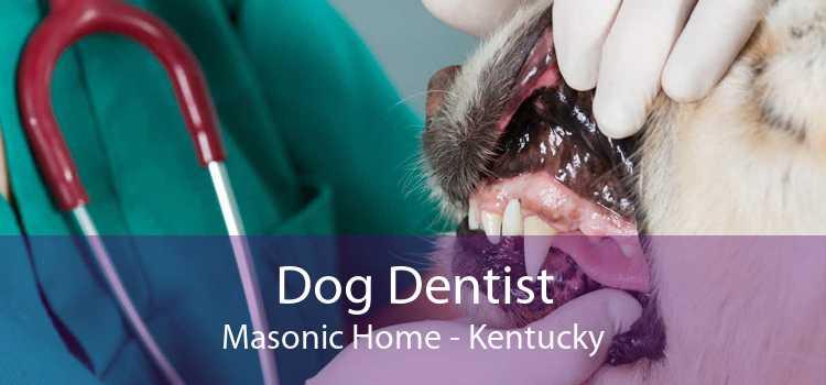 Dog Dentist Masonic Home - Kentucky