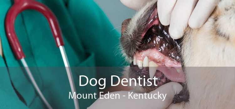Dog Dentist Mount Eden - Kentucky