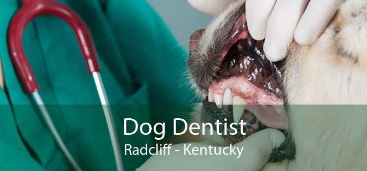 Dog Dentist Radcliff - Kentucky
