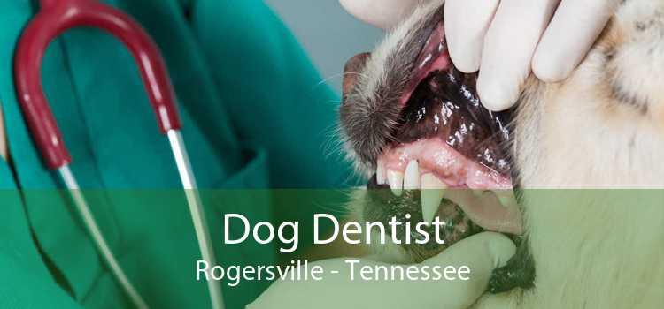 Dog Dentist Rogersville - Tennessee