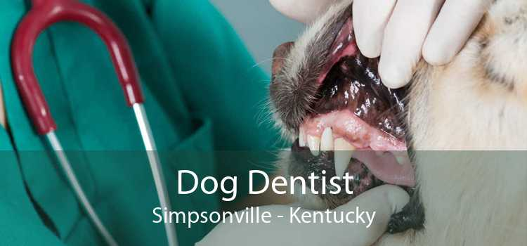 Dog Dentist Simpsonville - Kentucky