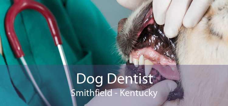 Dog Dentist Smithfield - Kentucky