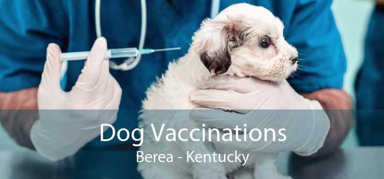 Dog Vaccinations Berea - Kentucky