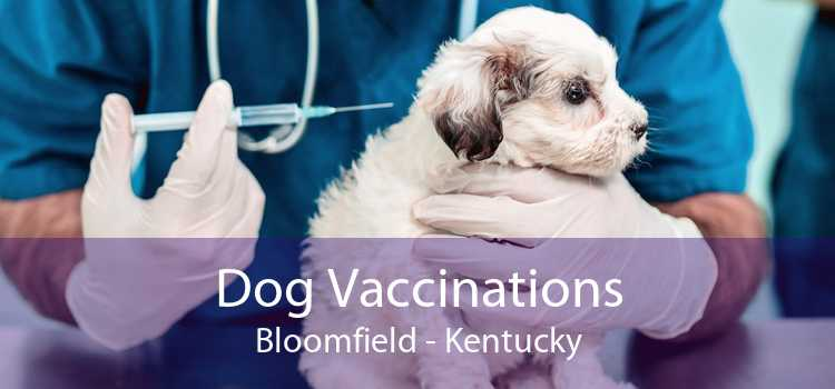 Dog Vaccinations Bloomfield - Kentucky
