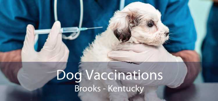 Dog Vaccinations Brooks - Kentucky