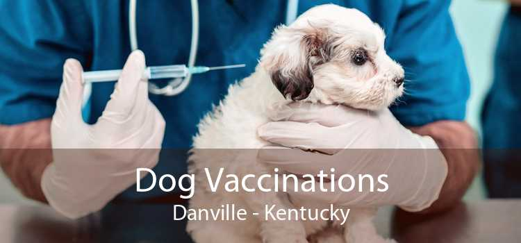 Dog Vaccinations Danville - Kentucky