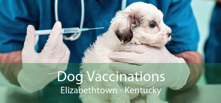 Dog Vaccinations Elizabethtown - Kentucky