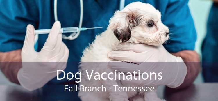 Dog Vaccinations Fall Branch - Tennessee