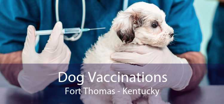 Dog Vaccinations Fort Thomas - Kentucky