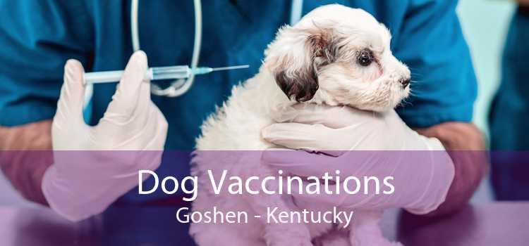 Dog Vaccinations Goshen - Kentucky