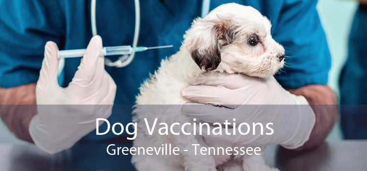Dog Vaccinations Greeneville - Tennessee