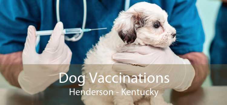 Dog Vaccinations Henderson - Kentucky
