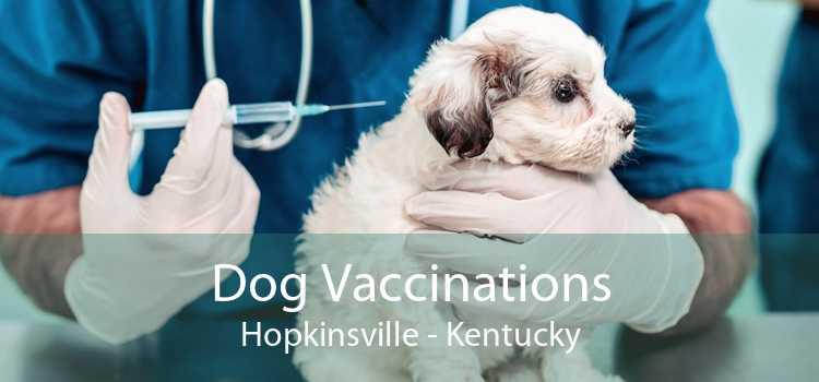 Dog Vaccinations Hopkinsville - Kentucky