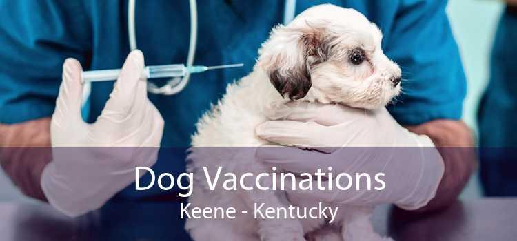 Dog Vaccinations Keene - Kentucky
