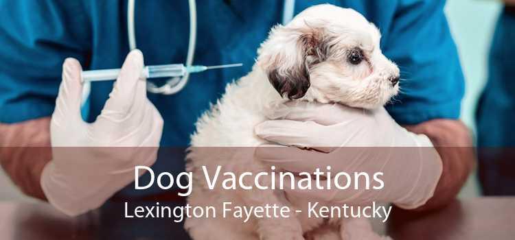 Dog Vaccinations Lexington Fayette - Kentucky