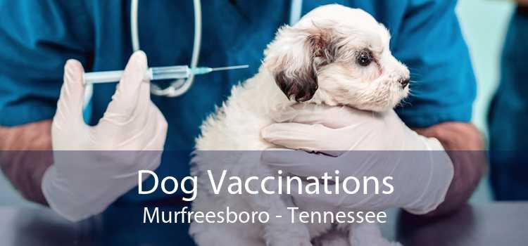Dog Vaccinations Murfreesboro - Tennessee