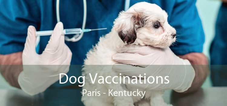Dog Vaccinations Paris - Kentucky