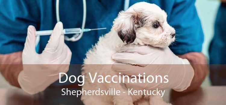 Dog Vaccinations Shepherdsville - Kentucky