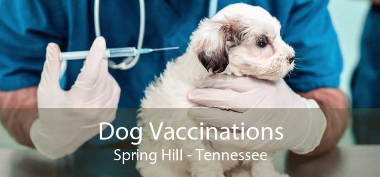 Dog Vaccinations Spring Hill - Tennessee