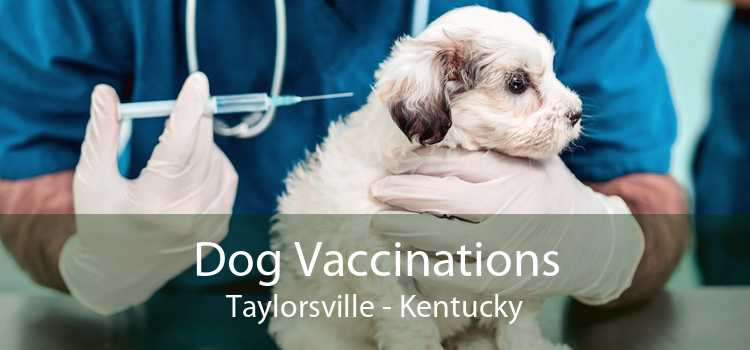 Dog Vaccinations Taylorsville - Kentucky