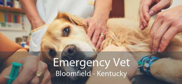 Emergency Vet Bloomfield - Kentucky