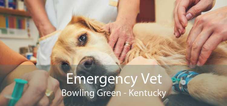 Emergency Vet Bowling Green - Kentucky