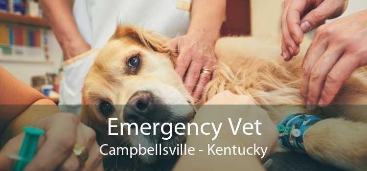 Emergency Vet Campbellsville - Kentucky