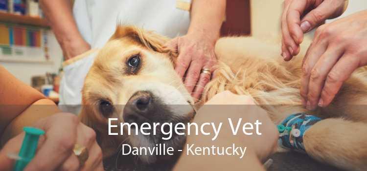 Emergency Vet Danville - Kentucky