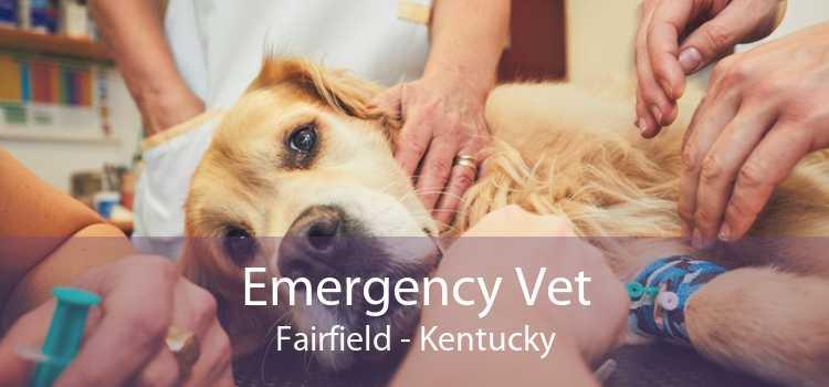 Emergency Vet Fairfield - Kentucky
