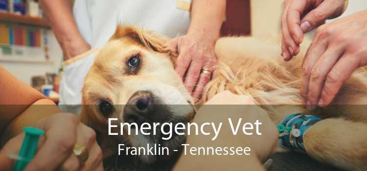 Emergency Vet Franklin - Tennessee
