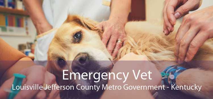 Emergency Vet Louisville Jefferson County Metro Government - Kentucky