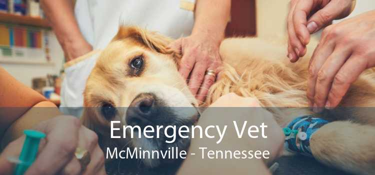 Emergency Vet McMinnville - Tennessee