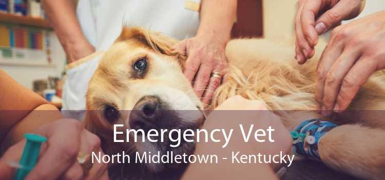 Emergency Vet North Middletown - Kentucky