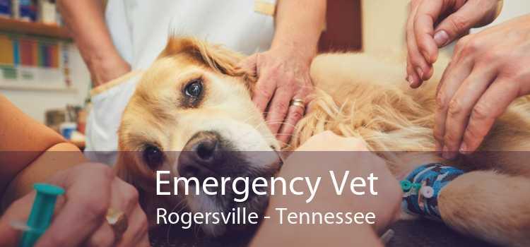 Emergency Vet Rogersville - Tennessee