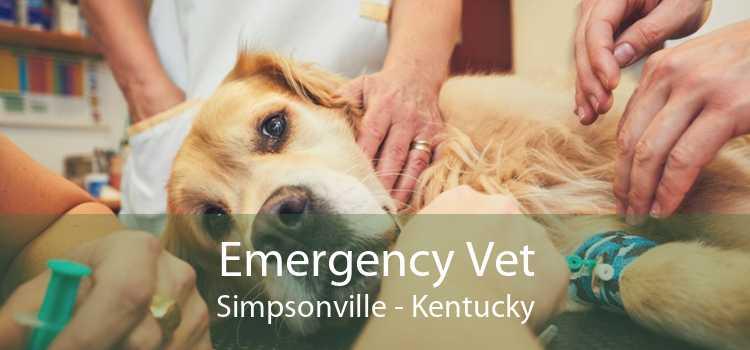 Emergency Vet Simpsonville - Kentucky