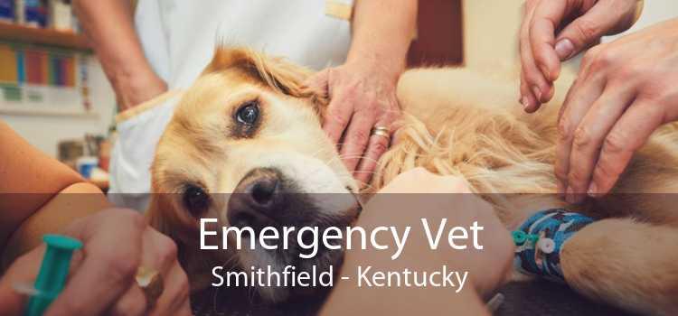Emergency Vet Smithfield - Kentucky
