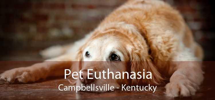 Pet Euthanasia Campbellsville - Kentucky