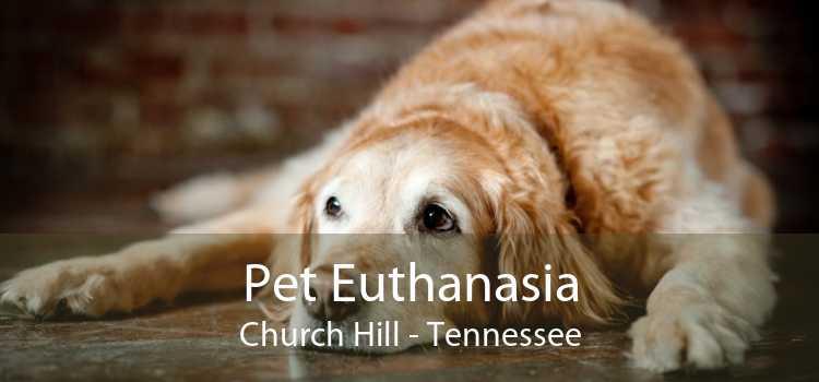 Pet Euthanasia Church Hill - Tennessee