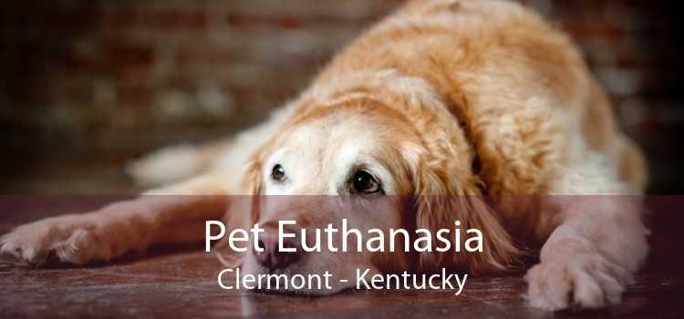 Pet Euthanasia Clermont - Kentucky