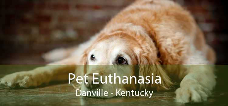 Pet Euthanasia Danville - Kentucky