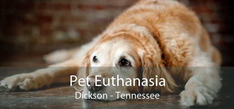 Pet Euthanasia Dickson - Tennessee